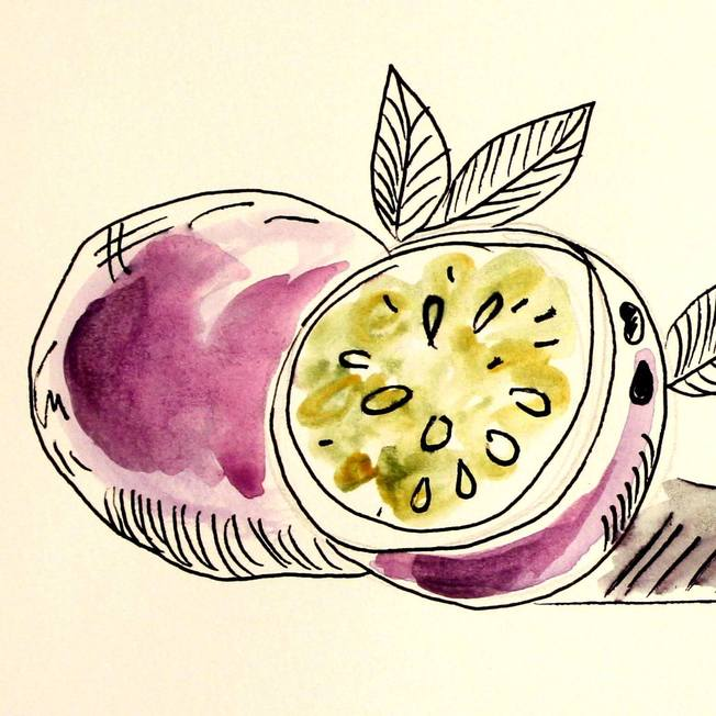Illustration with pomegranate